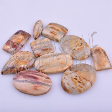 petrified palm wood smooth cabochon